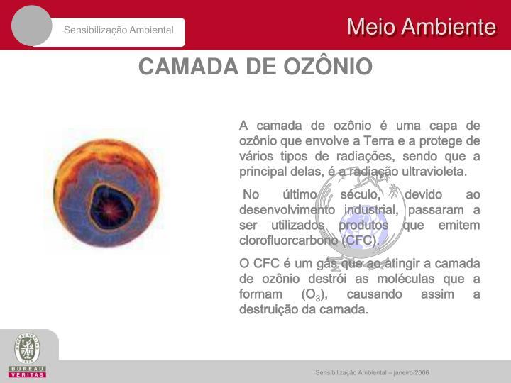 A camada de ozônio é uma capa