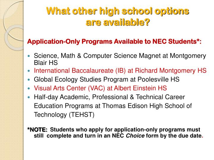 What other high school options