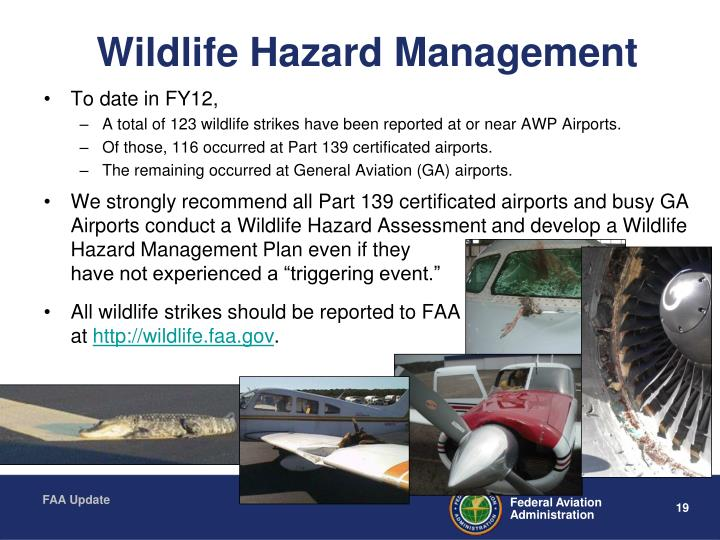 Wildlife Hazard Management