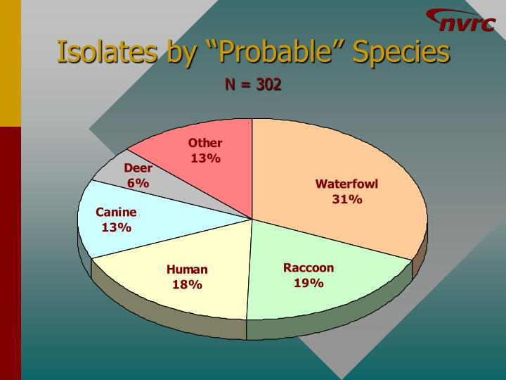 "Isolates by ""Probable"" Species"