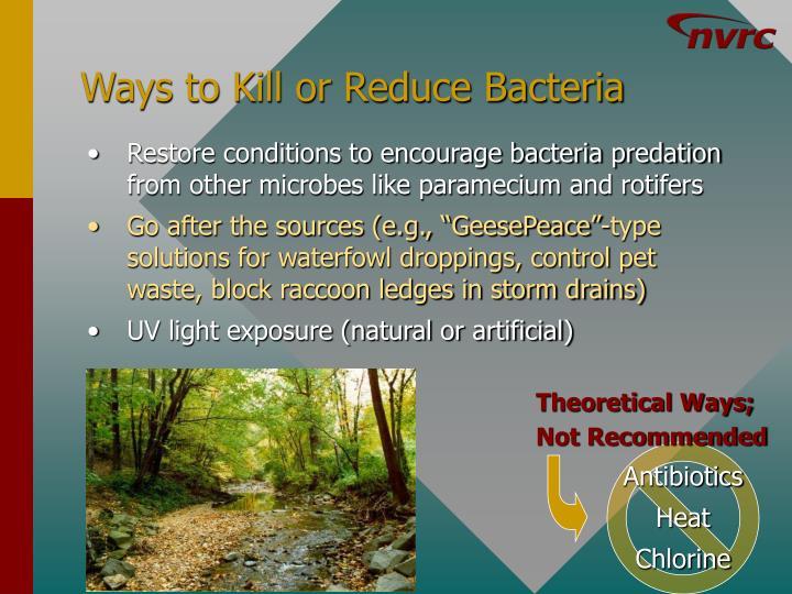 Ways to Kill or Reduce Bacteria
