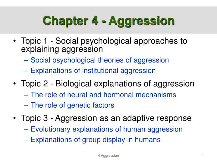 aggression in humans essay