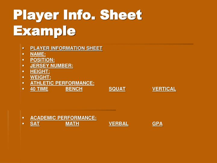 Player Info. Sheet Example