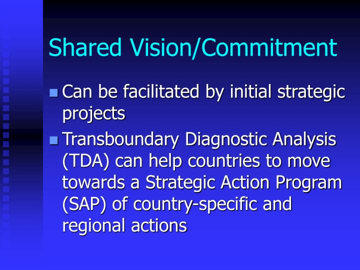 Shared Vision/Commitment