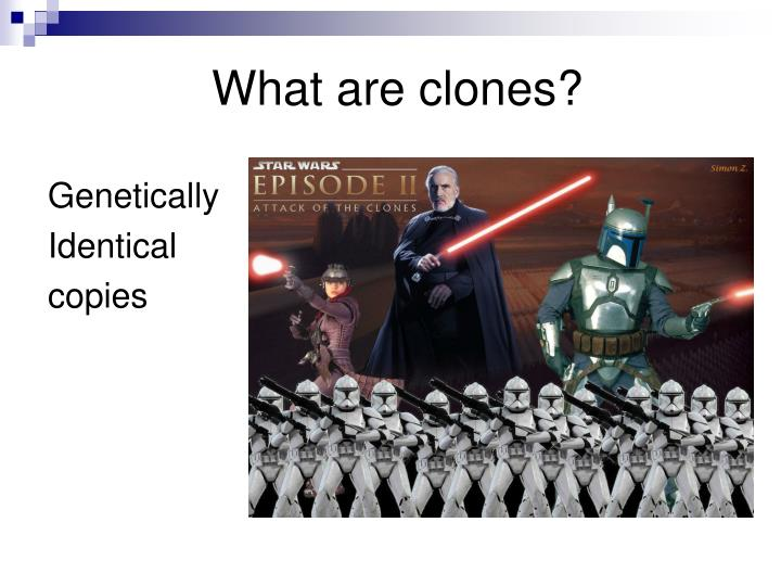What are clones?