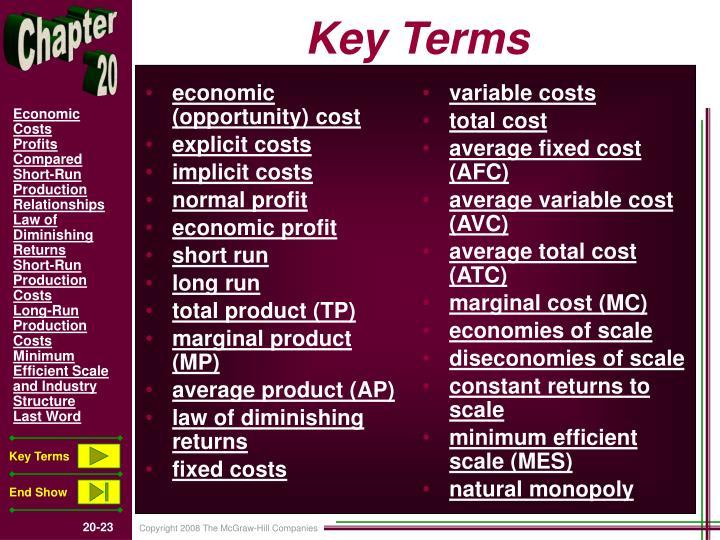 economic (opportunity) cost