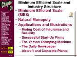 minimum efficient scale and industry structure