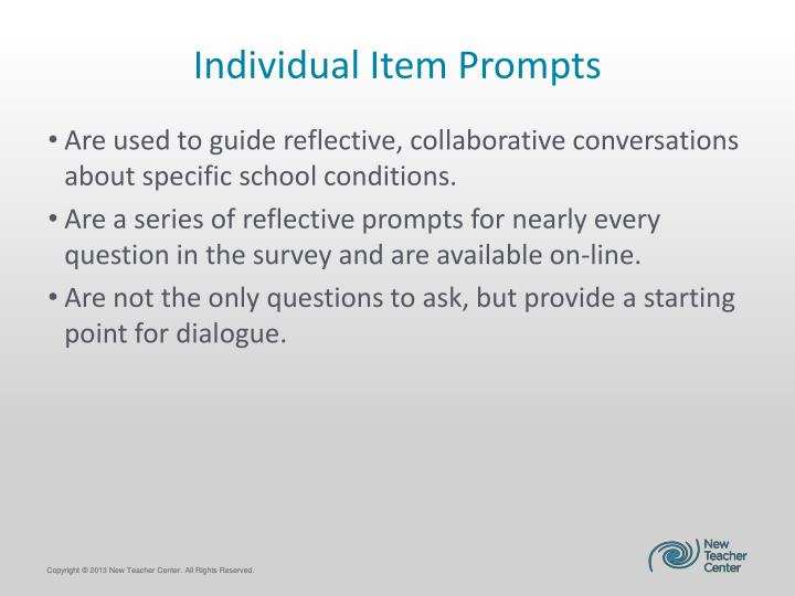 Individual Item Prompts