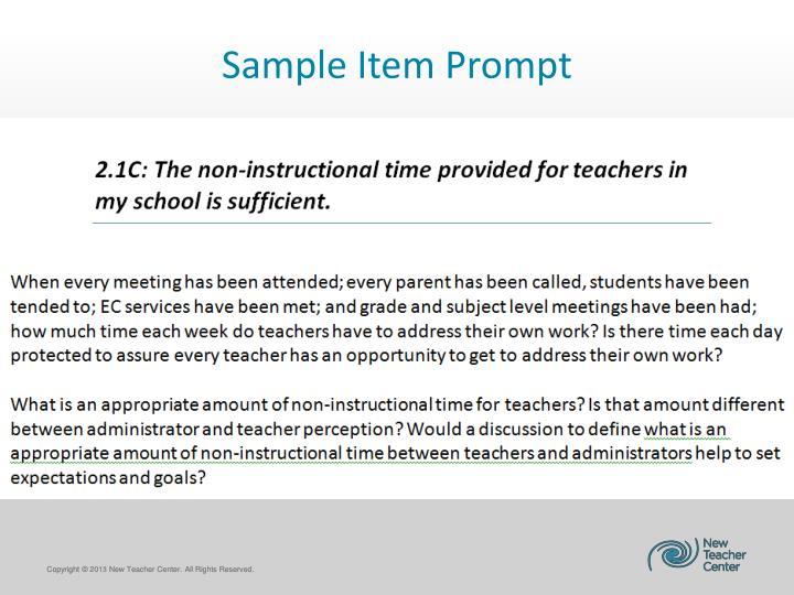 Sample Item Prompt