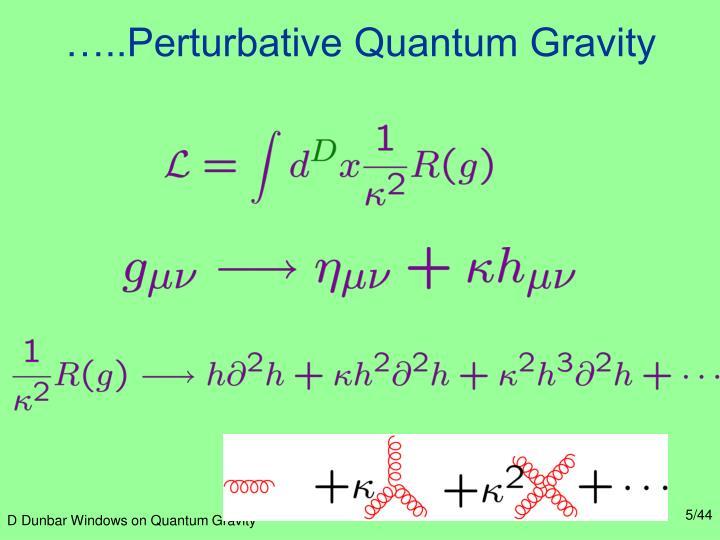 …..Perturbative Quantum Gravity