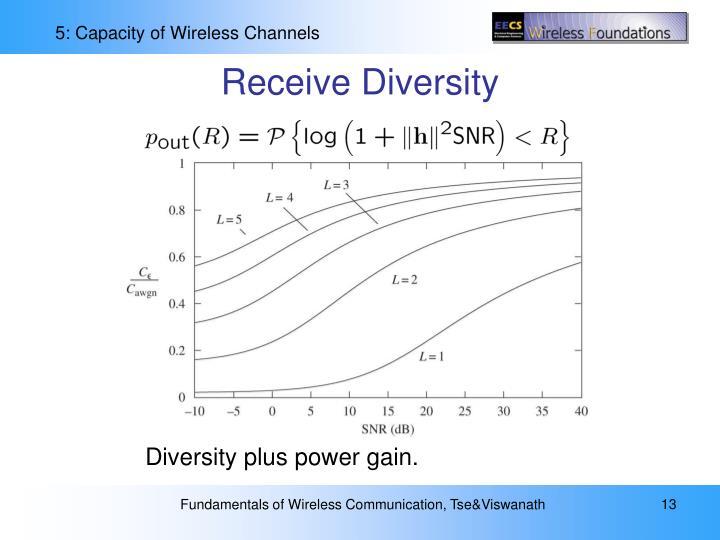 Receive Diversity