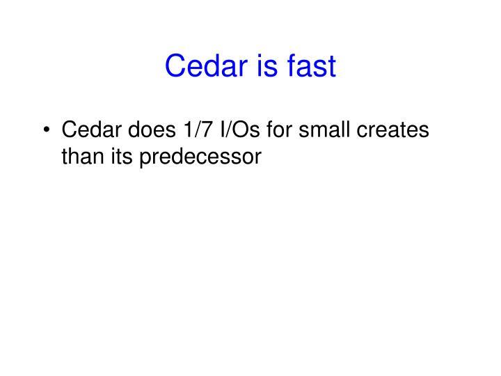 Cedar is fast