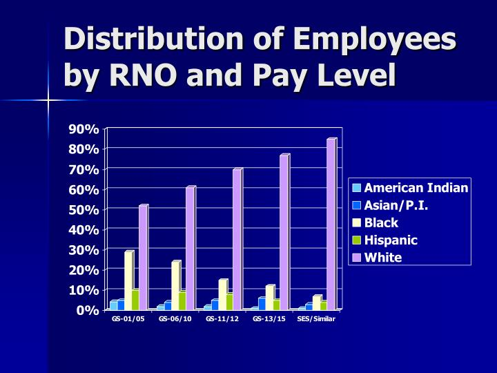 Distribution of Employees by RNO and Pay Level