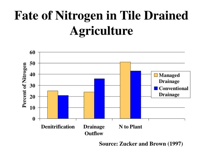 Fate of Nitrogen in Tile Drained Agriculture