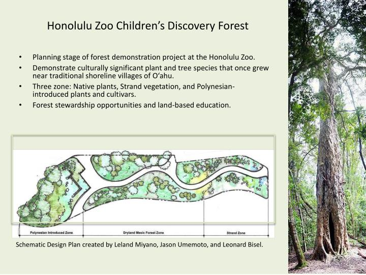 Honolulu Zoo Children's Discovery Forest