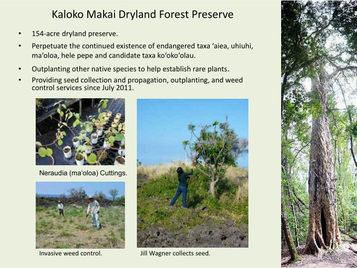 Kaloko Makai Dryland Forest Preserve
