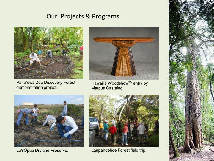 Our  Projects & Programs