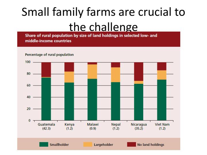 Small family farms are crucial to the challenge
