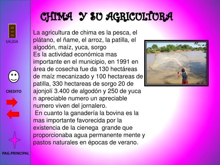 CHIMA  Y SU AGRICULTURA
