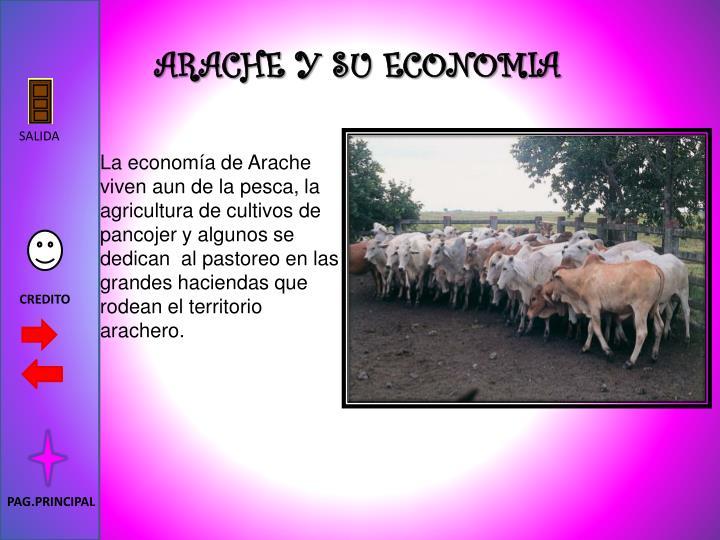 ARACHE Y SU ECONOMIA