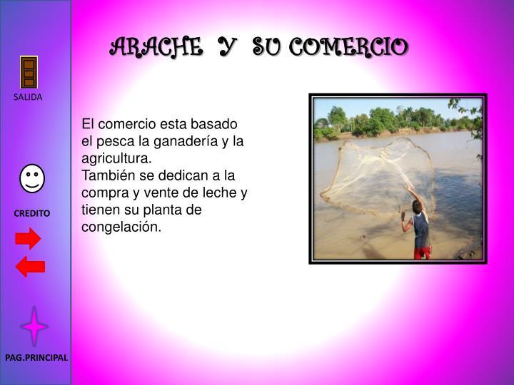 ARACHE  Y  SU COMERCIO