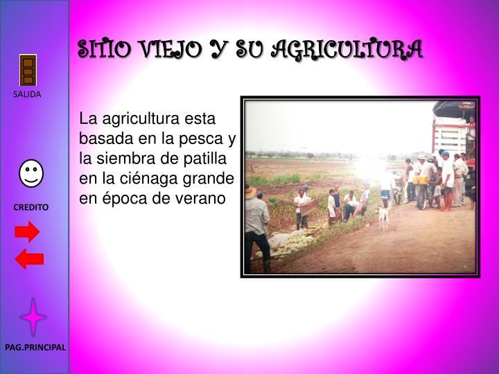 SITIO VIEJO Y SU AGRICULTURA