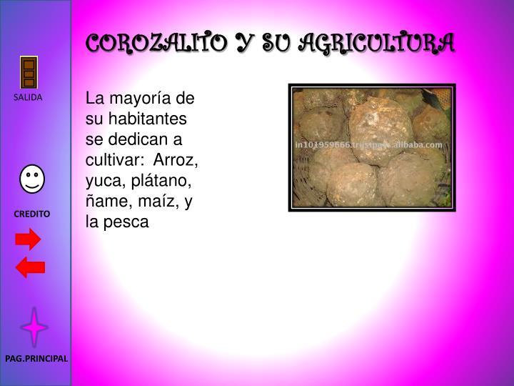 COROZALITO Y SU AGRICULTURA