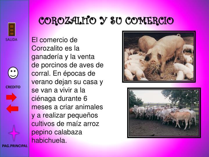 COROZALITO Y SU COMERCIO