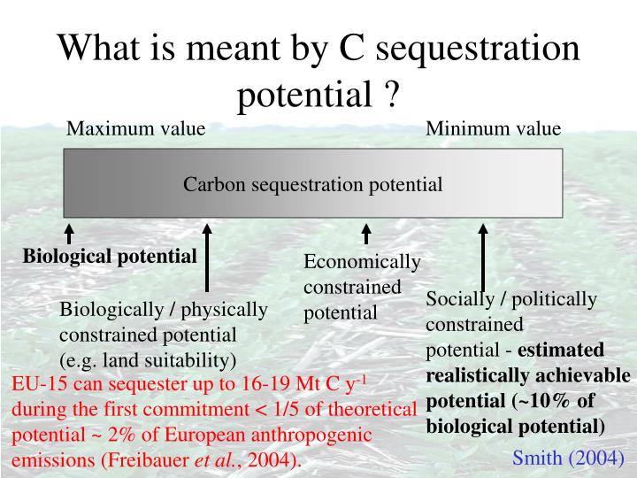 What is meant by C sequestration potential ?