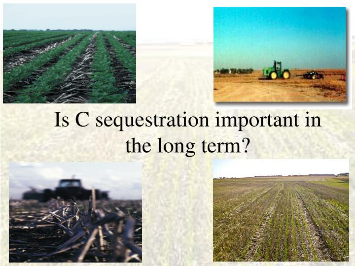 Is C sequestration important in the long term?