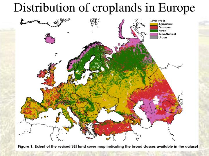 Distribution of croplands in Europe