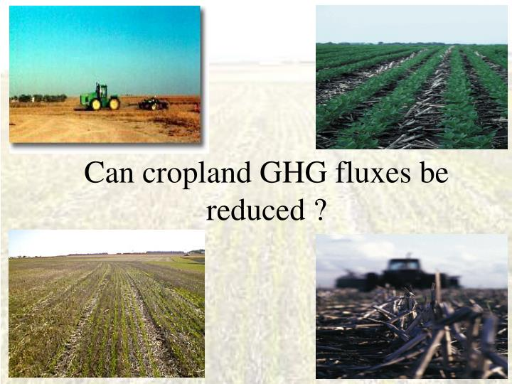 Can cropland GHG fluxes be reduced ?