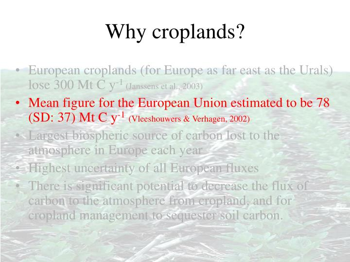 Why croplands?