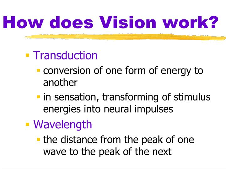 How does Vision work?