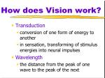 how does vision work
