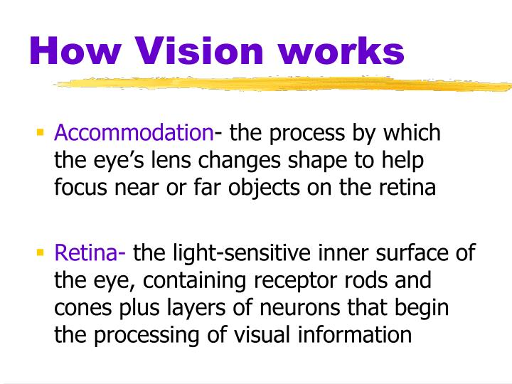 How Vision works