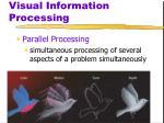 visual information processing