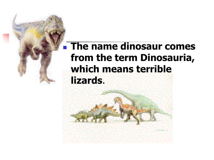 The name dinosaur comes from the term Dinosauria, which means terrible lizards