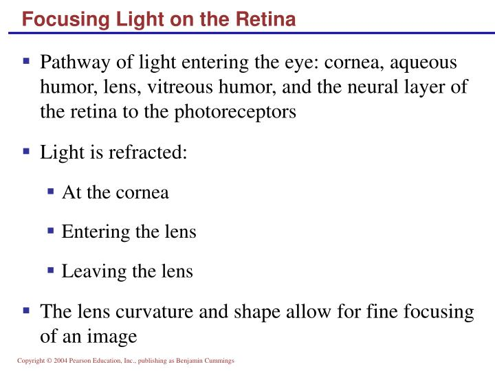 Focusing Light on the Retina