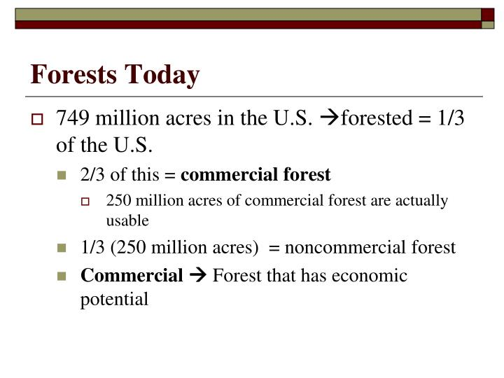 Forests Today