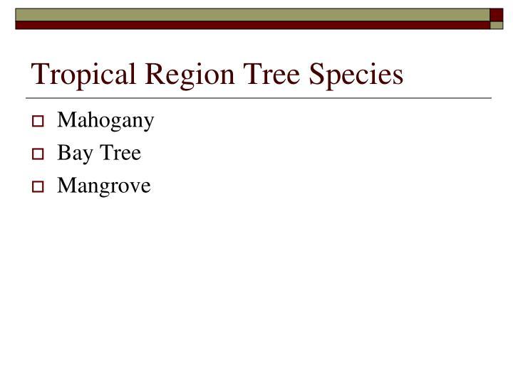 Tropical Region Tree Species