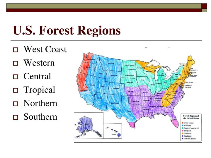 U.S. Forest Regions