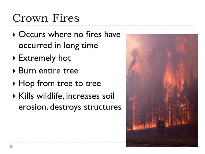 Crown Fires