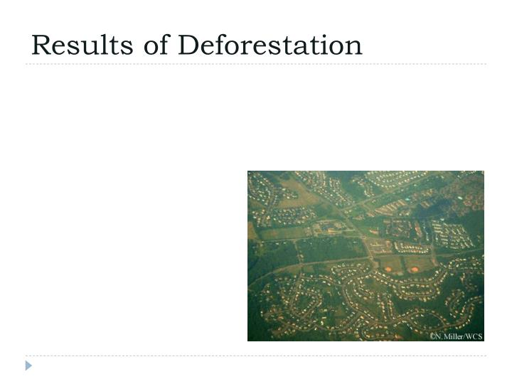 Results of Deforestation