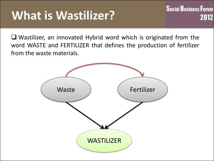What is Wastilizer?