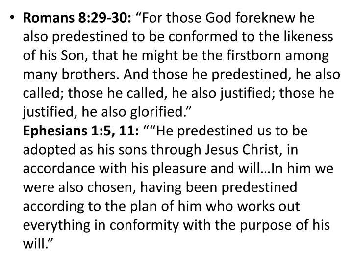 Romans 8:29-30: