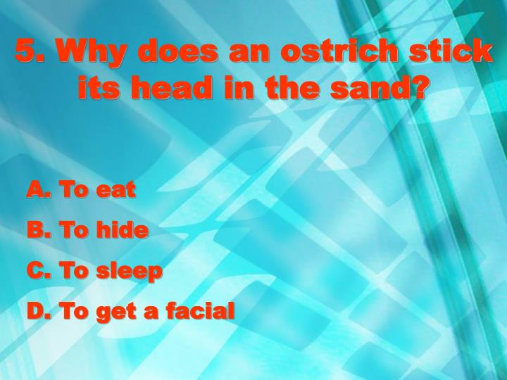 5. Why does an ostrich stick its head in the sand?