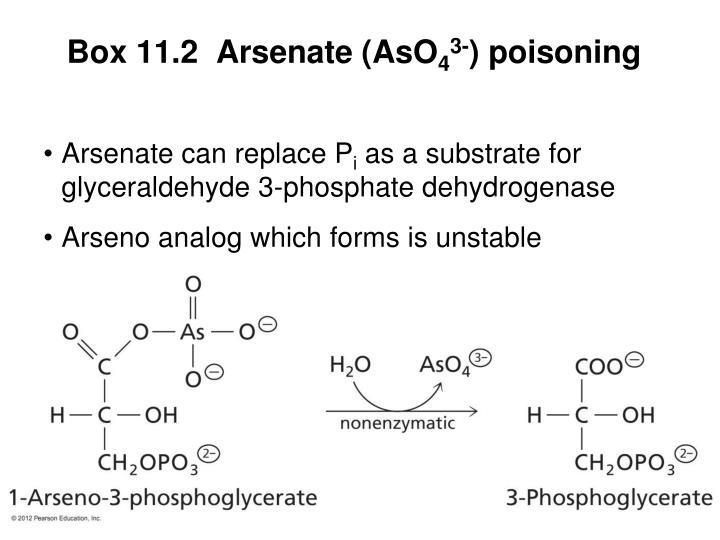 Box 11.2  Arsenate (AsO