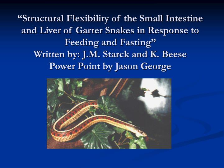 """Structural Flexibility of the Small Intestine and Liver of Garter Snakes in Response to Feeding and Fasting"""