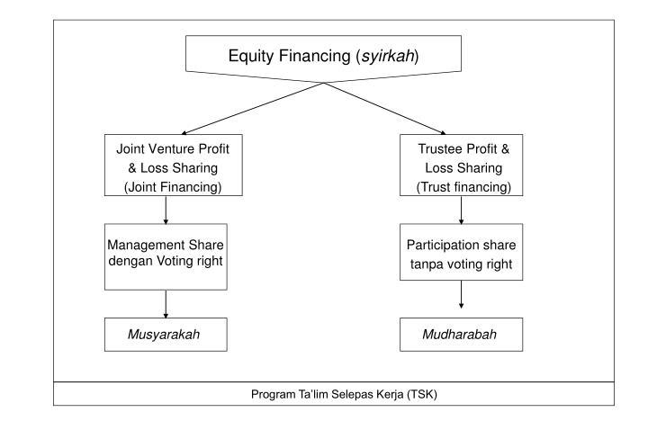 Equity Financing (